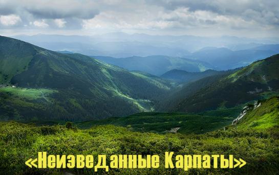 Тур в Карпаты из Одессы