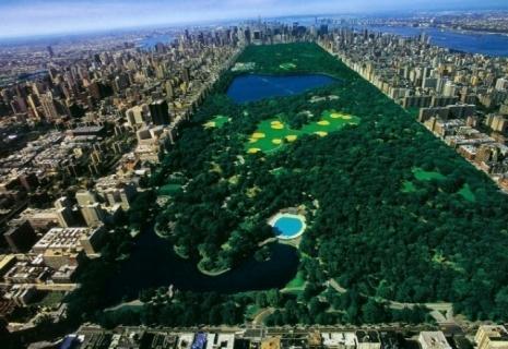 Отдых в США - Центральный парк!