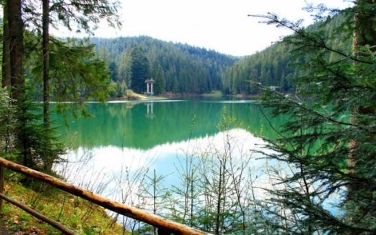 Отдых в Карпатах озеро