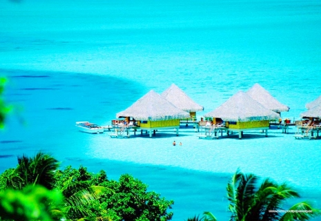 Отдых на Мальдивах: Тур ШРИ-ЛАНКА + МАЛЬДИВЫ от 1799 у.е с АВИА