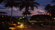 Шри-Ланка | Тур в Шри-Ланку из Киева + Бесплатные ночи 7-14 ноч. Цены от 580 $