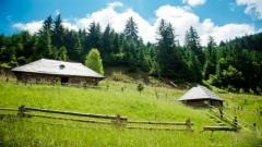 Экскурсионный тур в Карпаты