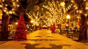 Новый Год 2015 во Франции. Новогодняя экскурсия из Праги в Париж -210€