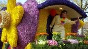 Тур в Амстердам на День Короля и Парад Цветов. Стоимость тура от 345 €