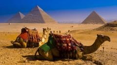 Горящие туры в Египет из Одессы и Киева. Отдых в Шарм Эль Шейх!
